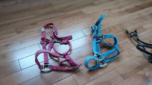 Various pieces of English tack for sale
