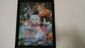 2D cats