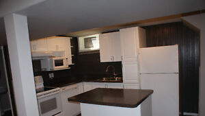 Great Basement Suite, all utilities included