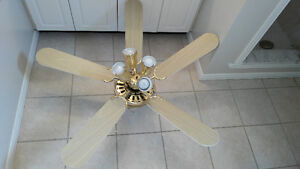 Excellent Condition Fan With Four-Bulb Adjustable Lights