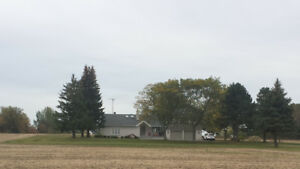 1 BR Above Ground Apartment On Estate Property – Westney & Hwy 7