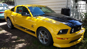 2005 mustang GT steeda screaming yellow Q