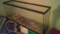 Reptile Terrarium size is 4ft x 13 inches x 20 inchrs high