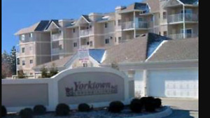 Windsor/Grand Marais/Yorktown Condominium