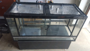 Reptile tanks for sale!