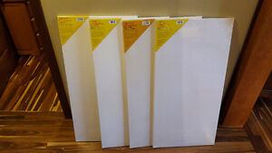 5 canvases for $30