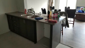 Kitchen Cabinet (counter top and box)