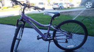Vélo Diamondback 24 pouces mauve