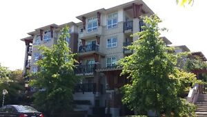 *Richmond 2 bed & 2 bath Apartment for Rent***