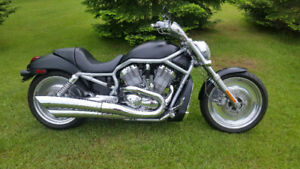 trade harley davidson v-rod for side x side or atv