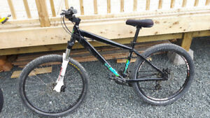 Kona Shred Mountain Bike