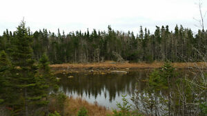 700' Waterfront Land- Sheet Harbour Passage