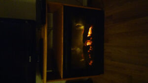 Fireplace/Heater/Stand