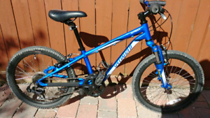 Specialized HotRock 20 EXCELLENT condition