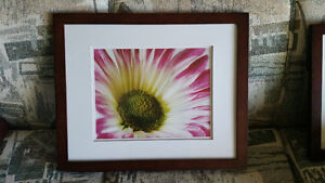 picture frame for 11 x 14 picture
