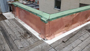 Roofing!  Roof replacement and roof repairs! London Ontario image 9