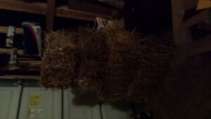 Hay for sale (decoration only)