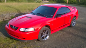 2000 V6 Mustang 5 spd coupe