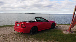 2002 Ford Mustang GT Convertible Convertible