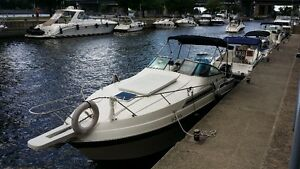 Bateau 28 pieds Wellcraft **condition A1**
