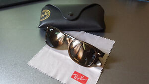 Ray ban's Polaruzed wayferer