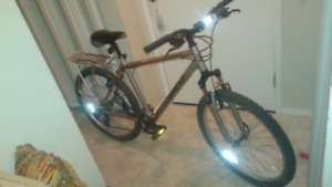 Norco pinnacle mountain bike 20 inch frame large