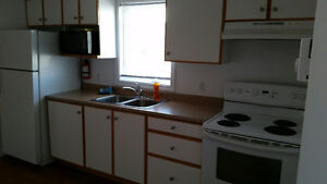 Apartment for a rent in Whitbourne near Long Harbour St. John's Newfoundland image 3