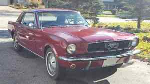 1966 Mustang London Ontario image 1