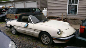1988 Alfa Romeo spider veloce parting all parts