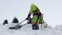 roof clearing/snowremoval