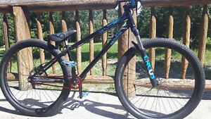 Specialized  P. Series dirt jumper