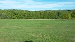 5 acres of land available for rent plus a huge workshop/storage Peterborough Peterborough Area image 6