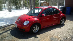 2007 Volkswagen Beetle up for adoption.
