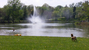 22' x 42' Park Model in 9 Mth Park 15 Min's from KW Kitchener / Waterloo Kitchener Area image 7