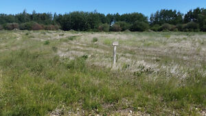 only 1 Lake Lot.!!  Reduced 20% ,  RENT TO OWN !