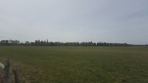 Pasture for rent near Rocky