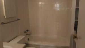 Bathtub London Ontario image 1