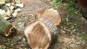 Need your wood split?? I will do it for you. Cambridge Kitchener Area image 7