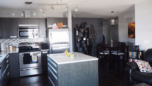 Roommate wanted in Beautiful East End Condo - Avail. April 30th
