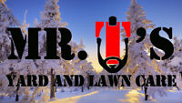 Winter services by Mr. T's Yard and Lawn Care