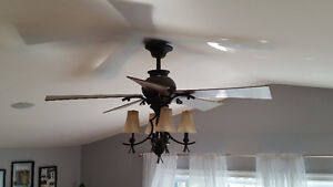 Stunning Ceiling Fan