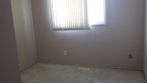 Room for rent in millwoods southside  avail. nov1