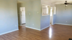 3 Bedroom House for Rent in Mount Pearl