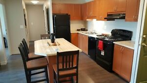 Leasing for May and September 2017 Kitchener / Waterloo Kitchener Area image 2