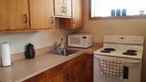 PRICE REDUCED Furnished 1 bedroom apartment sublet May-August