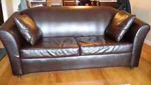 Leather Couch & Hide a Bed/Sofa-Lit en Cuir