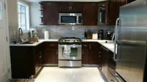 Osoyoos - Newly renovated & fully furnished - garden level suite