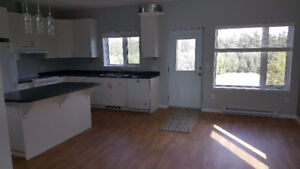 End Unit of Newly built triplex for rent Available Oct 1