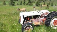 Ford 8N compact tractor 9N 2N