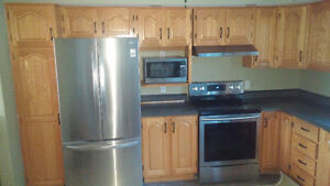 Full set of kitchen cabinets with countertop